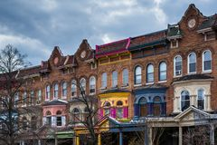 Row houses on Calvert Street in Charles Village, Baltimore, Maryland.  stock photo