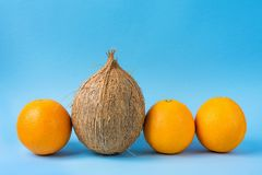Row of Identical Oranges One Single Coconut on Blue Background. Individuality Personality Uniqueness Concept. Royalty Free Stock Photos