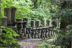 Row of japanese stone lanterns standing in the forest. Royalty Free Stock Photography