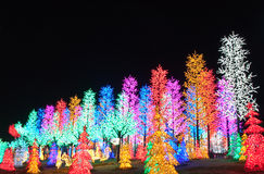 Row of LED Tree Decoration. LED Decoration Festival. Concept of enegy saving, cool lighting and decoration Stock Image