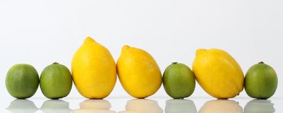 Row of lemons and limes Royalty Free Stock Photo