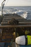 Row of lobster traps Royalty Free Stock Photography