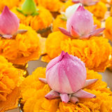 Row of lotus and yellow flower garlands on tray with pedestal in Stock Photos