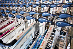 Row of luggage carts Stock Photography