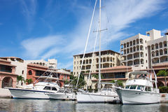 Row of luxury yachts mooring in a harbour. St Marten harbor with yachts and houses in the back Stock Images