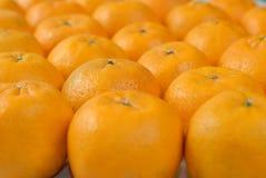 Row of Mandarin Stock Photos