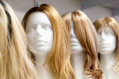 Row of Mannequin Heads with Wigs Stock Image