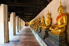 A row of meditating golden buddha royalty free stock photography
