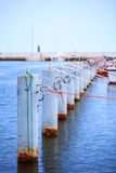 Row of metal bollards on the dock Stock Images