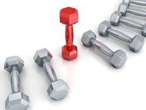 Row of metallic dumbbells with red one Stock Images