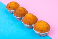 Row of mini cupcakes on bright background royalty free stock photo