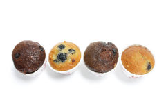 Row of Mini Muffins Royalty Free Stock Images