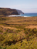 Row Of Moai By Sea Portrait Stock Image