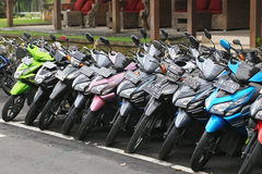 A row of mopeds in Bali Royalty Free Stock Photos