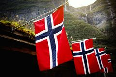 Row of norwegian flags outdoor on green nature, mountains in the background. stock images