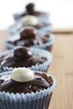 Row Of Cupcakes Royalty Free Stock Photo