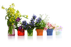 Free Row Of Flowers Stock Images - 9833914