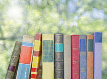 Row of old books Stock Photography