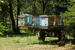Beehives in the trailer Royalty Free Stock Image