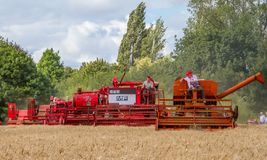 A row old vintage Massey Ferguson combine harvesters Stock Photos