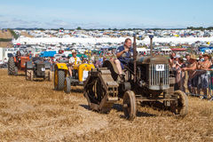 A row of old vintage tractors at show Royalty Free Stock Images