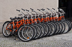 Row of Orange Bicycles royalty free stock photos