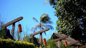 Row of orange Japanese lantern on blue sky, palms Royalty Free Stock Images