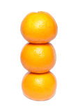 Row of orange mandarins Royalty Free Stock Photos