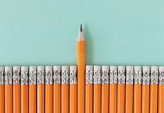 Row of orange pencils with one sharpened pencil. Leadership / standing out from a crowd concept with copy space.  stock image