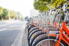 Row of orange rental bikes Stock Image