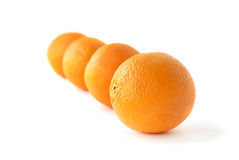 Row of oranges Stock Photos