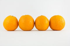 Row of oranges Stock Photo