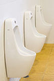 Row of outdoor urinals men public toilet,Closeup white urinals i Royalty Free Stock Photo