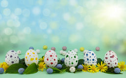 Row of painted speckled chocolate eggs isolated on green background with leaves and flowers stock images