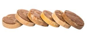 Row Of Palm Sugar. Row round palm sugar over white background stock image