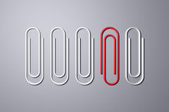Row of paper clips. Single red paper clip in row of silver ones, studio background Stock Photography