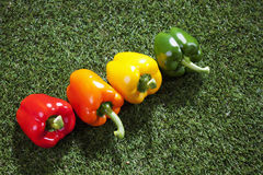 Row of paprikas on grass, copy space Royalty Free Stock Image