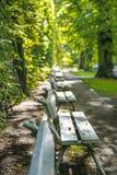 Row of park benches Royalty Free Stock Photos