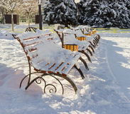 Row of park benches, covered with snow along the alley Royalty Free Stock Image
