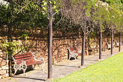 Row Of Park Benches Under Creeping Pergola Stock Image