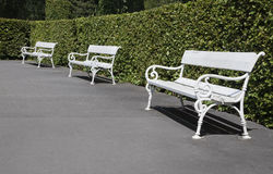 Row of park benches Stock Photo