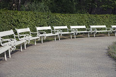 Row of park benches Royalty Free Stock Images