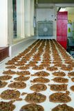 Row of Pecan Cookies. Pecan cookies being cooled in a bakery in the French Quarter in New Orleans Royalty Free Stock Photos
