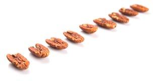 A Row Of Pecan Nut VII Stock Photo