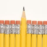 Row of pencils. Royalty Free Stock Photo