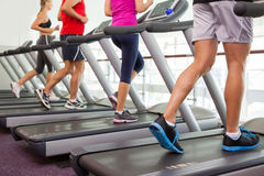 Row of people on treadmills Stock Image