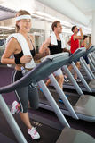 Row of people working out on treadmills Royalty Free Stock Photo