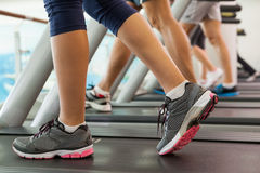 Row of people working out on treadmills Royalty Free Stock Photography