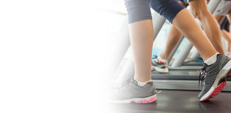 Row of people working out on treadmills Stock Images