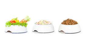 Row of  3 pet food bowls Royalty Free Stock Photography
